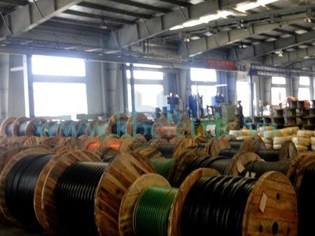 Nhà máy sản xuất Dây và cáp điện LS-VINA