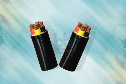 Cáp Điện Cadivi CVV-0,6/1 kV