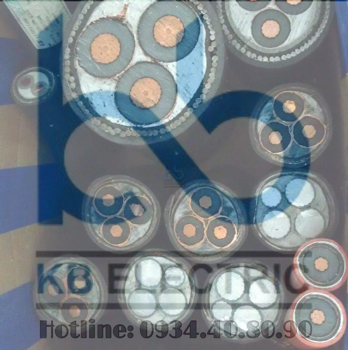 Cáp ngầm trung thế LS-VINA Cu/XLPE/PVC/DSTA/PVC 3x70 sqmm 12/20(24) kV